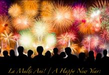 Un An Nou A New Year