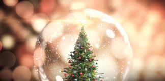 Sărbători Fericite Happy Holidays