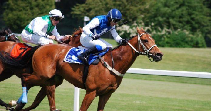 Cursele de cai Horse racing