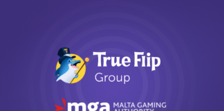 True Flip Group
